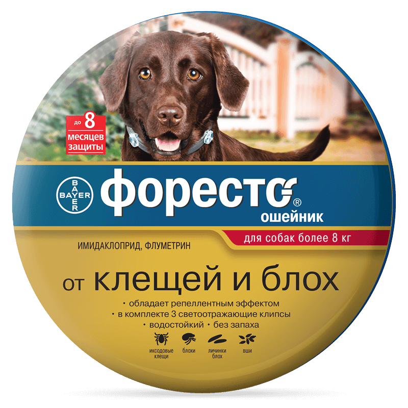 foresto-all-gold-dog-over8