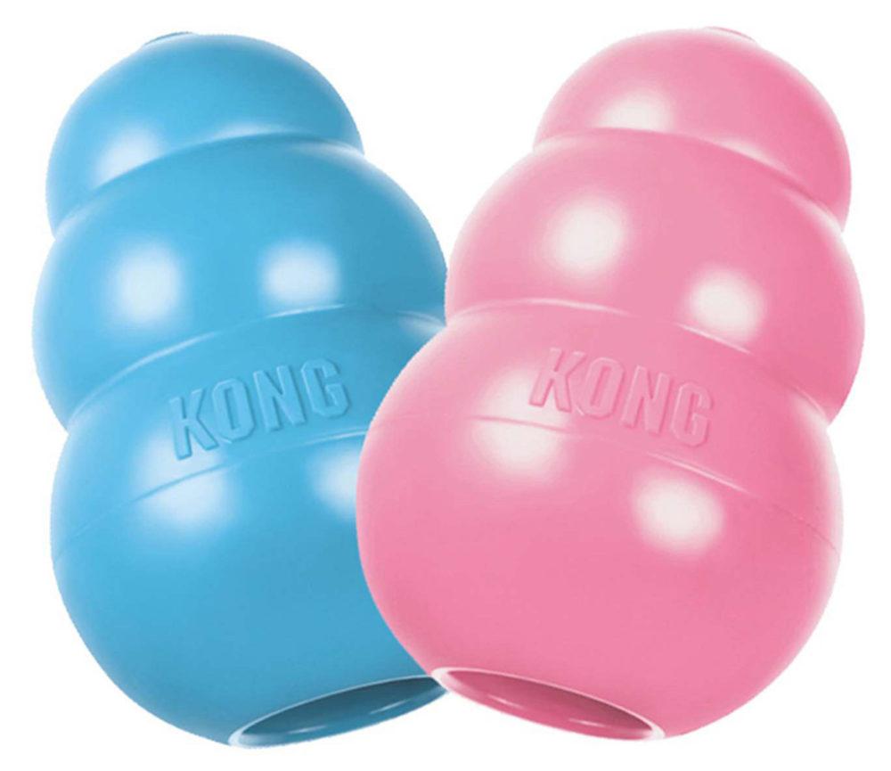 kong_2pup_blue